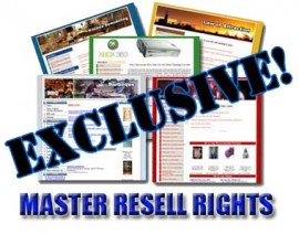 85 Exclussive Ready-To-Go Complete Niche Sites